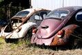 Junk Volkswagen Beetle Cars