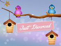 Just divorced funny illustration of birds Stock Photo