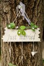 Just married close view at the sign Royalty Free Stock Images