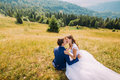 Just married couple kiss sitting on yellow grass at sunny field with majestic forest hills as background Royalty Free Stock Photo