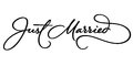 JUST MARRIED hand lettering (vector) Royalty Free Stock Photo