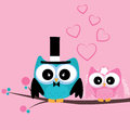 Just married owls cute on special pink background Stock Images