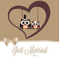Just married owls on special brown background Royalty Free Stock Photo
