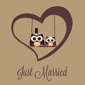Just married owls on special brown background Royalty Free Stock Photography