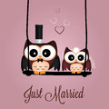 Just married owls on special pink background Stock Photos