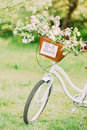 Just married sign on a white bike with wedding decoration Royalty Free Stock Photo