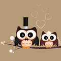 Just married two cute owls on brown background Stock Photo