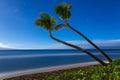 Kaanapali Beach, Maui, Hawaii Royalty Free Stock Photo