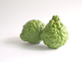 Kaffir lime with knotty surface Royalty Free Stock Photo