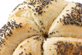 Kaiser bread roll white poppy seed on white Stock Photography