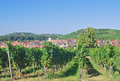 Kaiserstuhl Wine Region,Black Forest,Germany Royalty Free Stock Photo