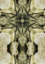 Kaleidoscope cross oregon coast boulders rocks along Royalty Free Stock Photos