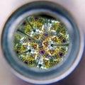 Kaleidoscope Cylinder Tube