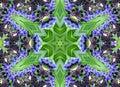 Kaleidoskop dizajn 36