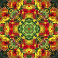 Kaleidoscope with natural motives of yellow and orange flowers Royalty Free Stock Photo