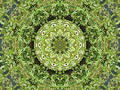 Kaleidoscope on the Wall Royalty Free Stock Photography