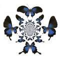 Kaleidoscopic Butterflies Illustration Royalty Free Stock Photography