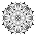 Kaleidoscopic Floral Pattern. ...