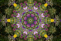 Kaleidoscopic Flower Design