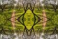 Kaleidoscopic Pattern From Spr...