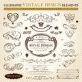 Kalligrafisch uitstekend ornament Vectorframe Royalty-vrije Stock Foto's