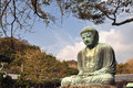 Kamakura daibutsu at kotoku in temple japan Royalty Free Stock Photo
