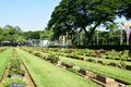Kanchanaburi war cemetery thailand the known locally as the don rak is the main prisoner of pow associated with Royalty Free Stock Photography
