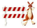 Kangaroo cartoon character with baracade Royalty Free Stock Photo