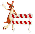 Kangaroo cartoon character with  baracade Royalty Free Stock Photo