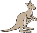 Kangaroo and joey kangaroowith baby in pouch Royalty Free Stock Photo