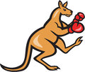 Kangaroo kick boxer boxing cartoon illustration of a with gloves viewed from side on isolated background done in style Royalty Free Stock Photo