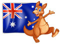 A kangaroo presenting the flag of australia illustration on white background Stock Image