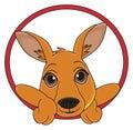 Kangaroo and road sign Royalty Free Stock Photo