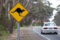 Kangaroo sign on a road Royalty Free Stock Photo