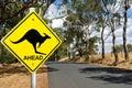 Kangaroo warning road sign Royalty Free Stock Photo