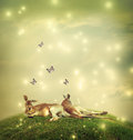 Kangaroos in a fantasy landscape two hilltop with butterflies Stock Image