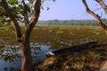 Kanjia Lake Of Orissa