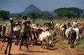 Karamojong cattle herders with guns, Uganda Stock Photo