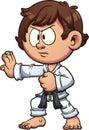 Karate kid Royalty Free Stock Photo