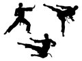 Karate martial art silhouettes of men in various or other poses including high kick and flying kick Stock Photography