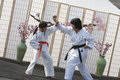 Karate Self Defense Royalty Free Stock Photos