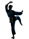 Karate vietvodao martial arts man silhouette Royalty Free Stock Images