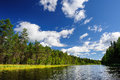 Karelian woods beautiful river coast in the wild karjala Royalty Free Stock Image