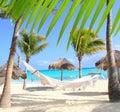 Karibische Strandhängematten- und -palmen Stockfotos