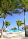 Karibische Strandhängematten- und -palmen Stockbild