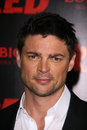 Karl Urban Royalty Free Stock Images