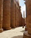 Karnak Columns. Luxor, Egypt Royalty Free Stock Photos