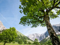 Karwendel mountains in summer austria Stock Photography