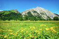 Karwendel mountains in summer austria Royalty Free Stock Image