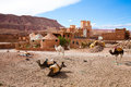 Royalty Free Stock Photo Kasbah in Morocco